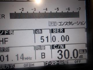 010.JPG